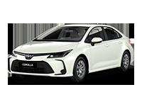 Corolla XII 2019—2020